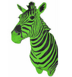zebra_green.jpg